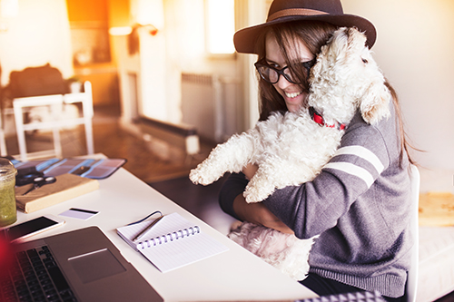 Ways to Appreciate Employees with Dogs at Work